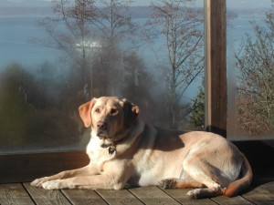 Cory in the sun